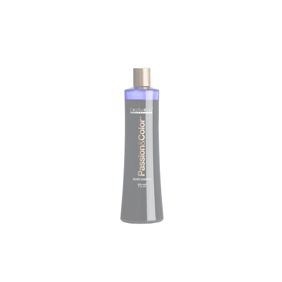 silver_shampoo_0658_c_b